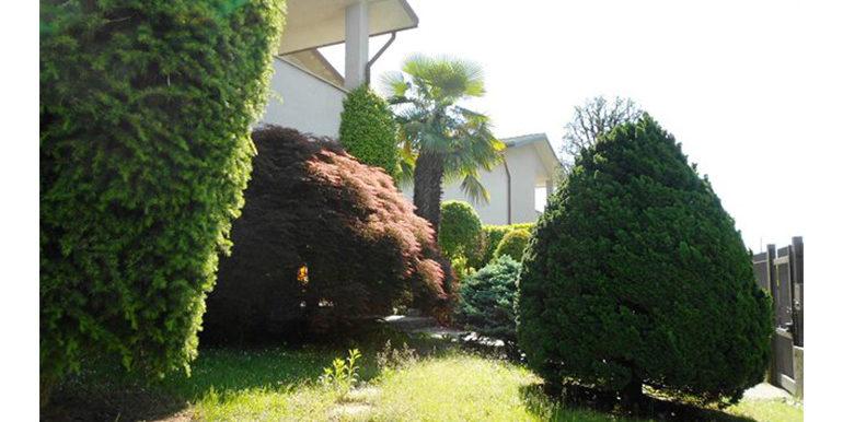 id_445_villa_indipendente_castellanza_giardino